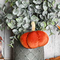 Velvet Pumpkin Hang-It