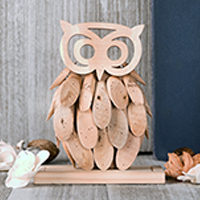 Owl Natural