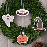 Festive Halloween Go-Card Variety Pack