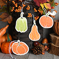 Colorful Pumpkin Go-Card Variety Pack
