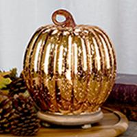 Glass Blown Pumpkin Accent Shade
