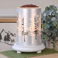 Winter Trees Simmering Light with Antique White Base