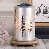 Winter Trees Simmering Light with Wood Grain Base